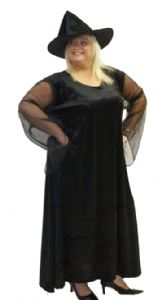 Black Witch Costume Plus Size